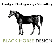 Black Horse Design (North Wales Horse)