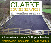 Clarke Equine Services 2019 (North Wales Horse)