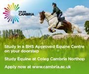 Coleg Cambria 12 (North Wales Horse)