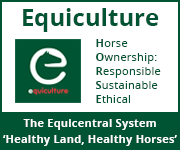 Equiculture 01 (North Wales Horse)