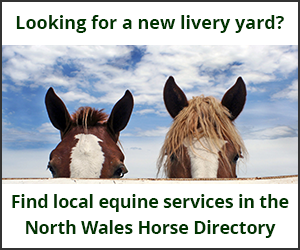 Livery Yards (North Wales Horse)