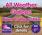 Kelsall Hill Gallops (North Wales Horse)