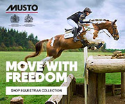 Musto 3 (North Wales Horse)
