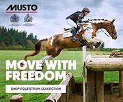 Musto 3 (North Wales Horse)