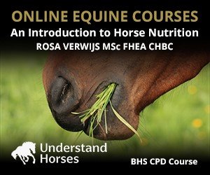 UH - An Introduction To Horse Nutrition (North Wales Horse)